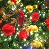 2012 - Christmas - church 006