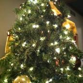2012 - Christmas - church 030